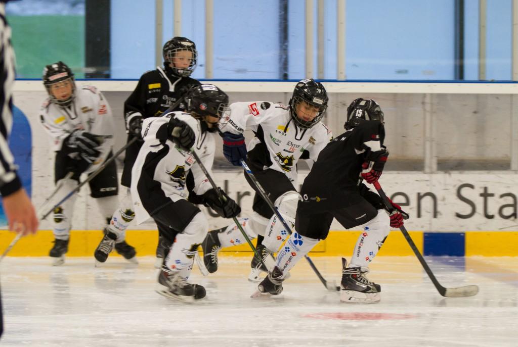 StavangerHockeyU11-7814